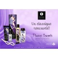 Grossiste dropshipping Shunga Coffret cadeau plaisirs charnels fruits exotiques